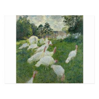 Turkeys (1876) postcard