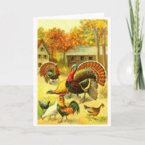 Turkeys and chickens holiday card