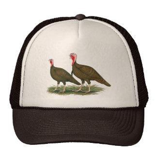 Turkeys:  Chocolate Trucker Hats