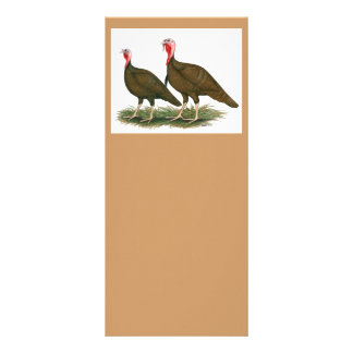 Turkeys:  Chocolate Rack Card