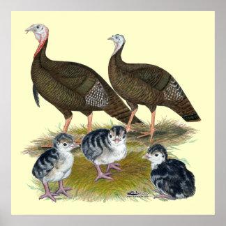 Turkeys Eastern Wild Family Poster