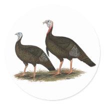 Turkeys Eastern Wild Pair Classic Round Sticker