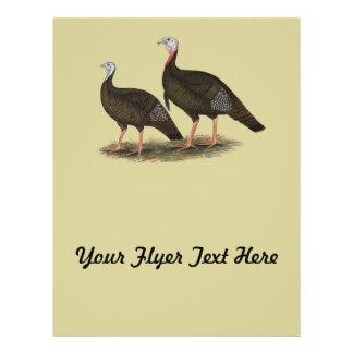 Turkeys Eastern Wild Pair Flyer