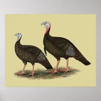 Turkeys Eastern Wild Pair Poster