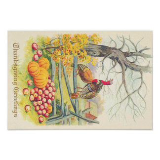 Turkeys Farm Pumpkin Apples Tree Fall Leaves Poster