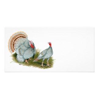Turkeys:  Lilac Personalized Photo Card