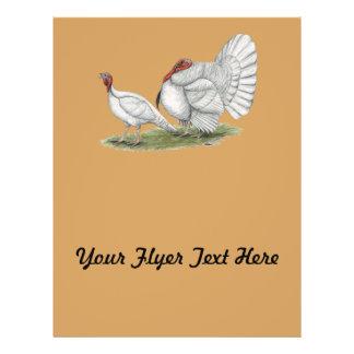 Turkeys White Holland Flyer