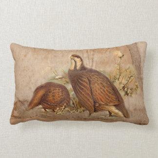 Turkie Pillows
