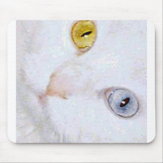 Turkish Angora- 2 different eye colors Mouse Pad