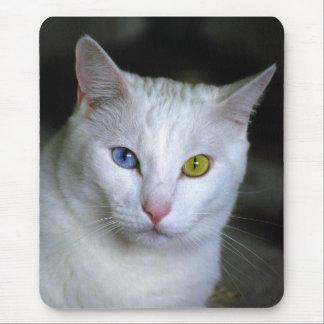 Turkish Angora Odd Eyes Mousepad