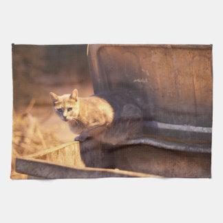 Turkish Cat kitchen Towel