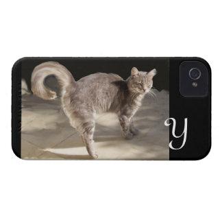 TURKISH CAT MONOGRAM iPhone 4 CASE
