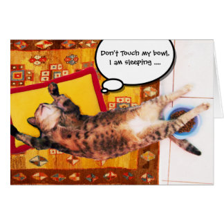TURKISH CAT ON THE OLD CARPET CARD