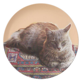 TURKISH CAT ON THE OLD CARPET PLATE