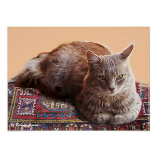 TURKISH CAT ON THE OLD CARPET POSTER