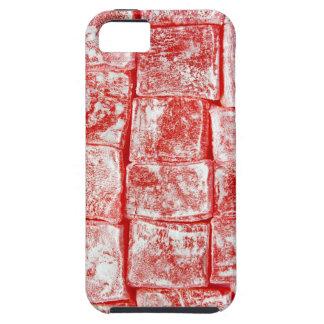 Turkish Delight iPhone 5 Case