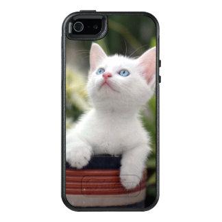 Turkish White Kitten (2.5 Months Old ) OtterBox iPhone 5/5s/SE Case