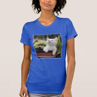Turkish White Kitten (2.5 Months Old ) T-Shirt
