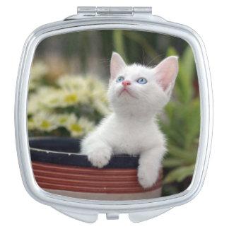 Turkish White Kitten (2.5 Months Old ) Vanity Mirror