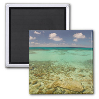 Turks and Caicos, Grand Turk Island, Cockburn 2 2 Inch Square Magnet