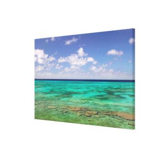 Turks and Caicos, Grand Turk Island, Cockburn 3 Canvas Print
