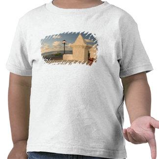 Turks and Caicos, Grand Turk Island, Cockburn Tshirt