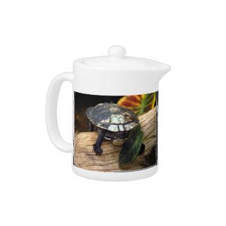 turle on log_12x9 teapot