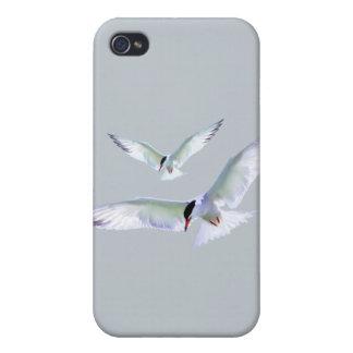 Turn Tern Turn iPhone 4 Cover
