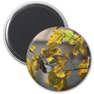 Turning Leaves Magnet