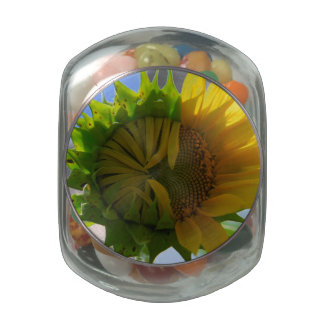 Turning Point Glass Candy Jar