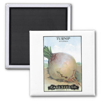 Turnip, Card Seed Company Magnet