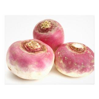 Turnips Flyer