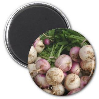 Turnips Fridge Magnet