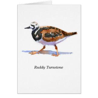 Turnstone rubicundo tarjeta pequeña