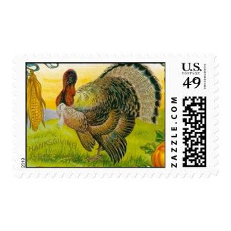 Turquía con el sello del maíz y de las calabazas