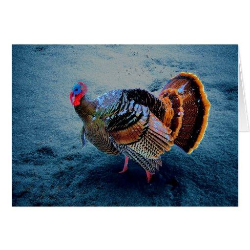 Turquía en la nieve 3 tarjeta de felicitación