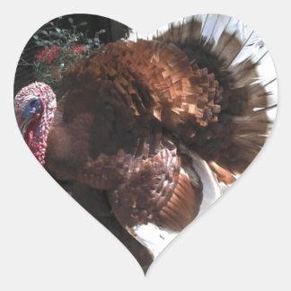 Turquía Calcomanía De Corazón Personalizadas