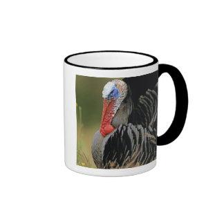 Turquía salvaje, gallopavo del Meleagris, varón Taza De Dos Colores