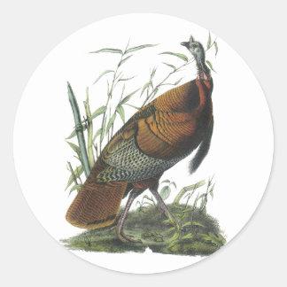 Turquía salvaje, Juan Audubon Pegatinas Redondas