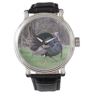 Turquía salvaje reloj de mano