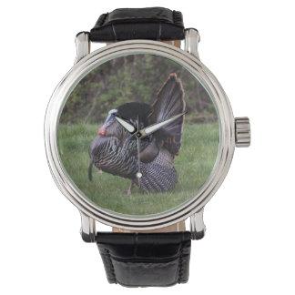 Turquía salvaje relojes de mano