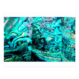 Turquoise abalone paua shell detail postcards