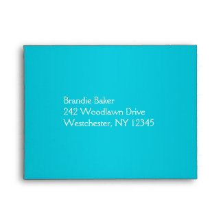 Turquoise and Gray Floral Envelope for RSVP Card envelope