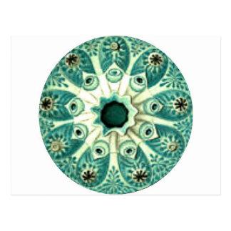 Turquoise Anemone Mandala Postcards