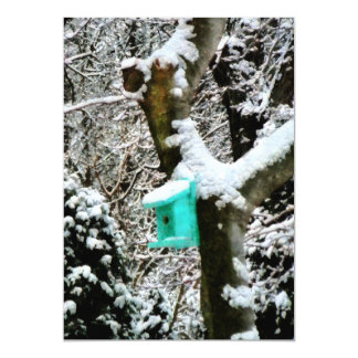 Turquoise Birdhouse in Winter Card