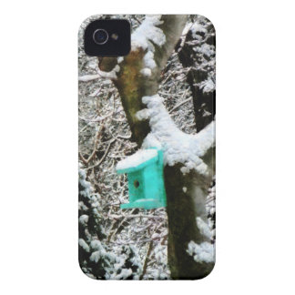 Turquoise Birdhouse in Winter Case-Mate Blackberry Case