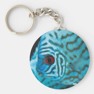 Turquoise Blue Discus Basic Round Button Keychain