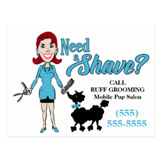 Turquoise Blue Humorous Need a Shave Groomer Postcard