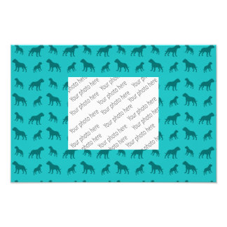 Turquoise bulldog pattern photo print