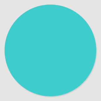 Turquoise Classic Round Sticker